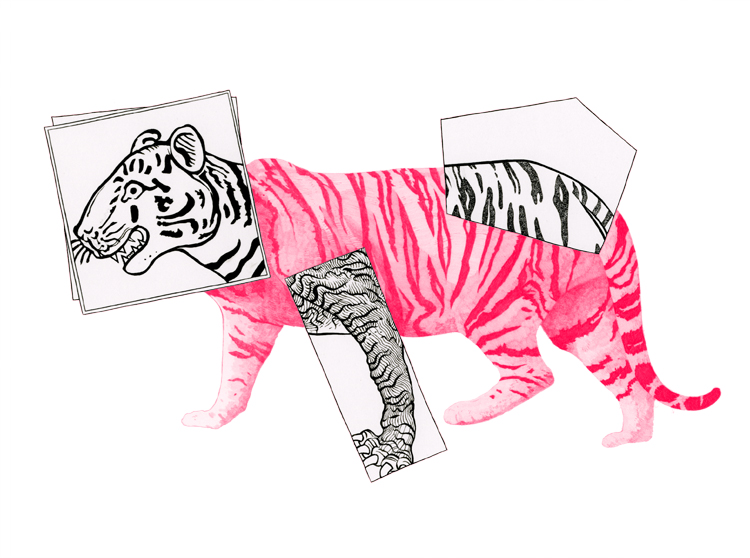 antoine-revoy-tiger